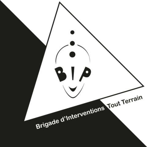 Logo la BiiiP
